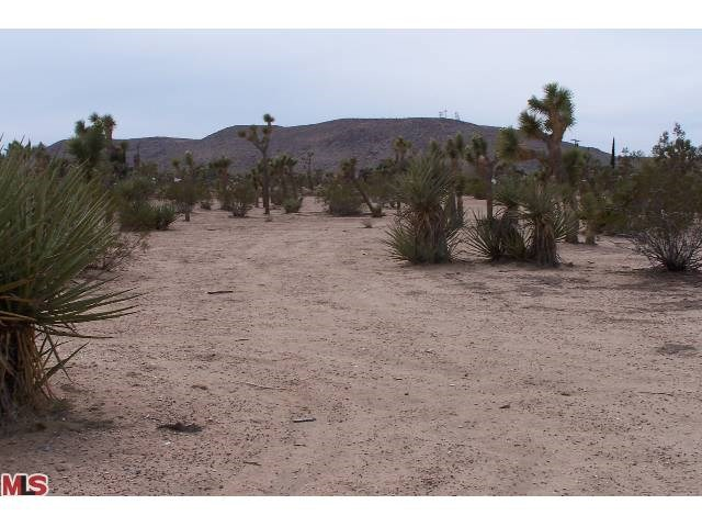 0 Forest Drive, Yucca Valley, CA 92284