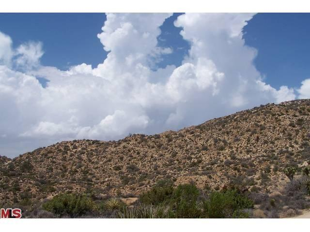 0 Section 31, Yucca Valley, CA 92284