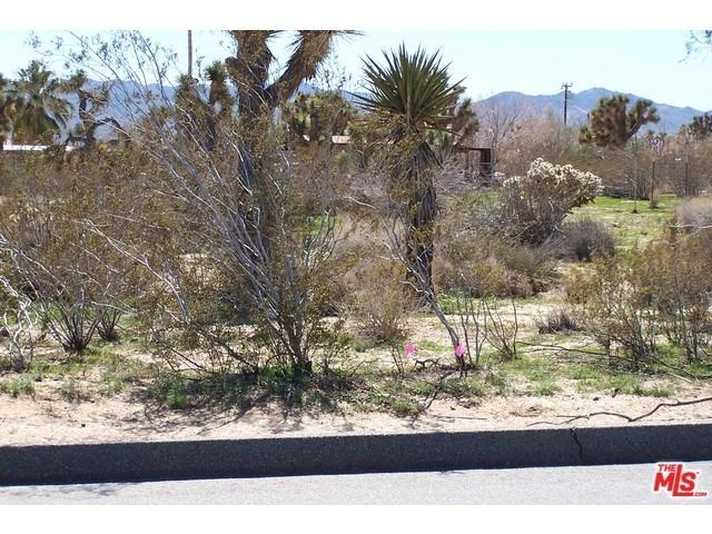 0 Buena Vista Dr, Yucca Valley, CA 92284