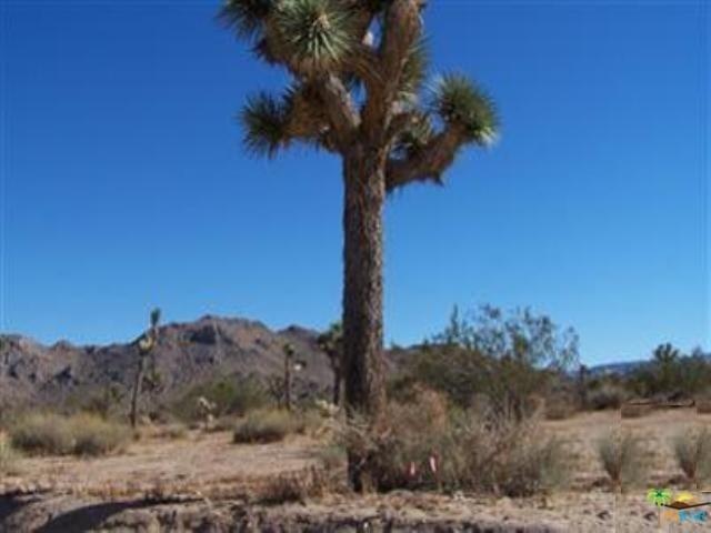 60027 Campanula St, Yucca Valley, CA 92284