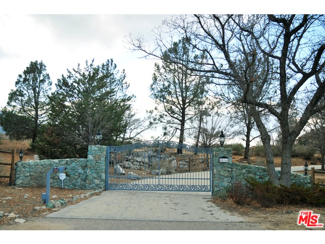 28765 Pine Canyon Road, Lake Hughes, CA 93532