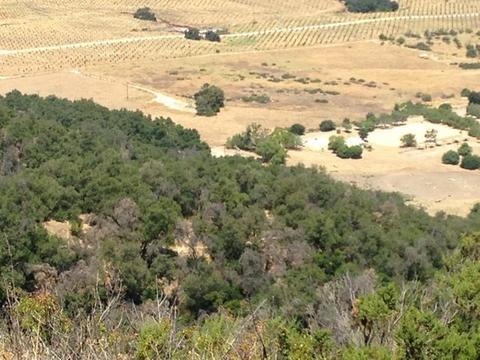 Sulphur Mountain Rd Road, Ojai, CA 93023