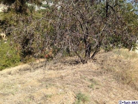 3603 Mimosa Dr, Los Angeles, CA 90065