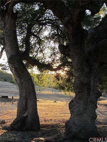 0 Golden Pond Rd, Creston, CA 93432
