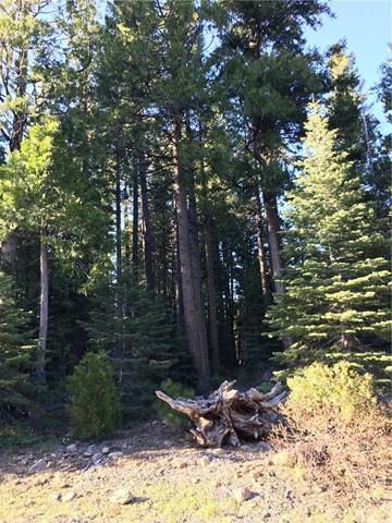 0 Humboldt Rd, Butte Meadows, CA 95942