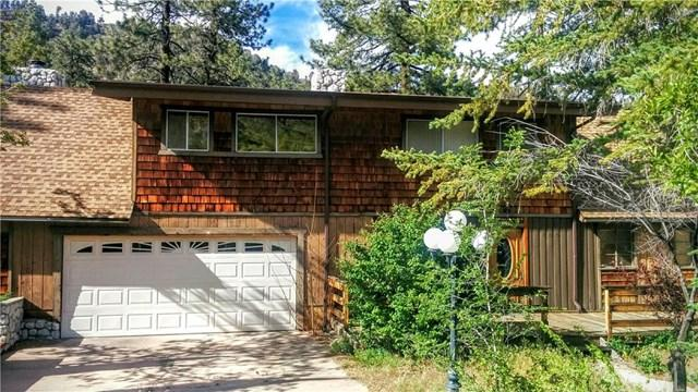 800 Mountain View Ave Wrightwood, CA 92397