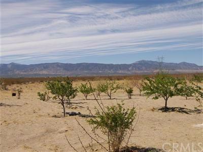 2705 Mojave Dr, Pinon Hills, CA 92372