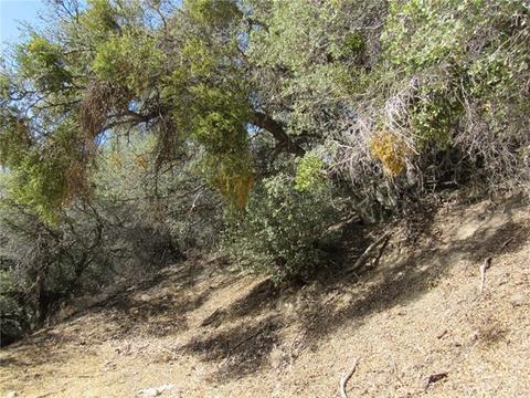 0 Buena Vista Way, Frazier Park, CA 93225
