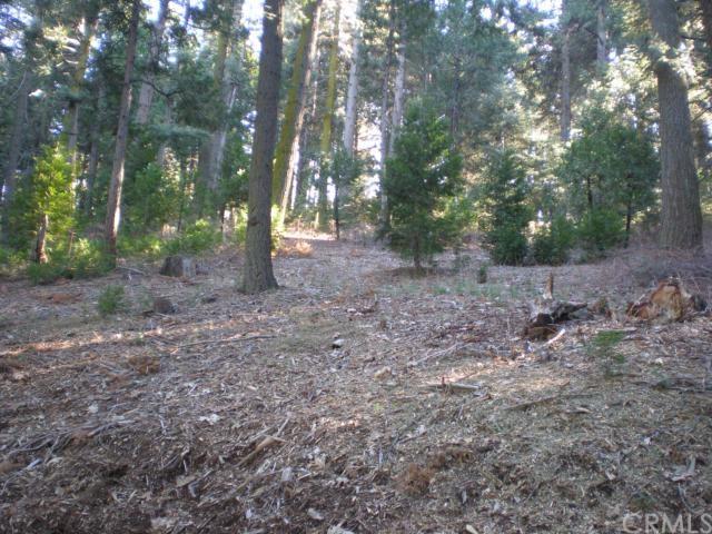 11 N Peak Circle, Cedarpines Park, CA 92322