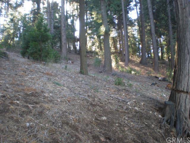 11 N Peak Cir, Cedarpines Park, CA 92322