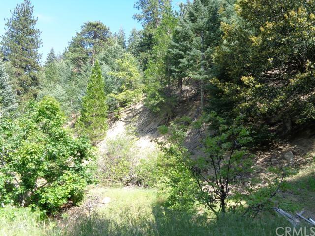 55 Forest Lake Dr, Crestline, CA 92325