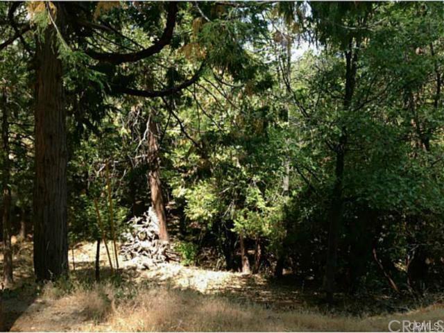 0 Deerway, Lake Arrowhead, CA