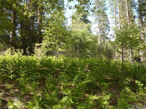 0 Mountain Creek Home Rd, Angelus Oaks, CA 92305