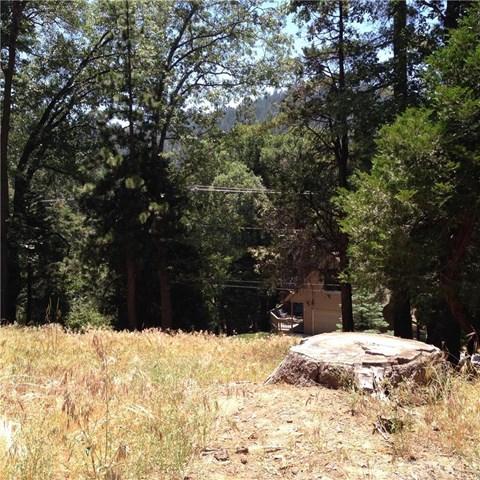 28931 Potomac Drive, Lake Arrowhead, CA 92352