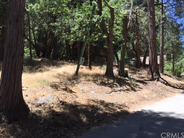 9080 Mountain View Dr, Forest Falls, CA 92339