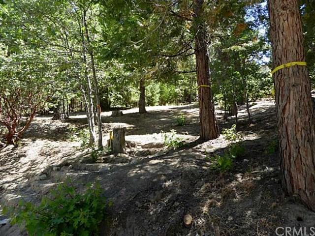 0 Grass Valley Rd, Lake Arrowhead, CA