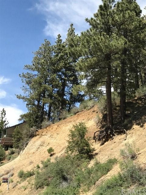 0 Canyon, Fawnskin, CA