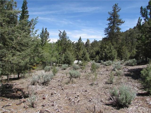 15232 Acacia Way, Pine Mountain Club, CA 93222