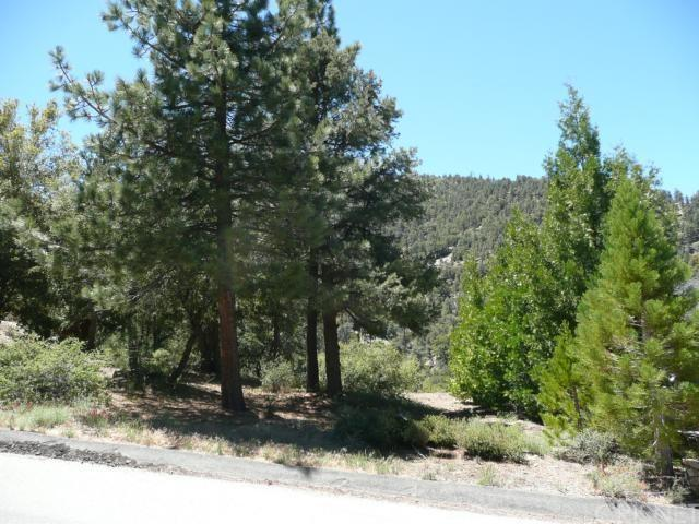 1425 Banff Dr, Pine Mountain Club, CA 93222