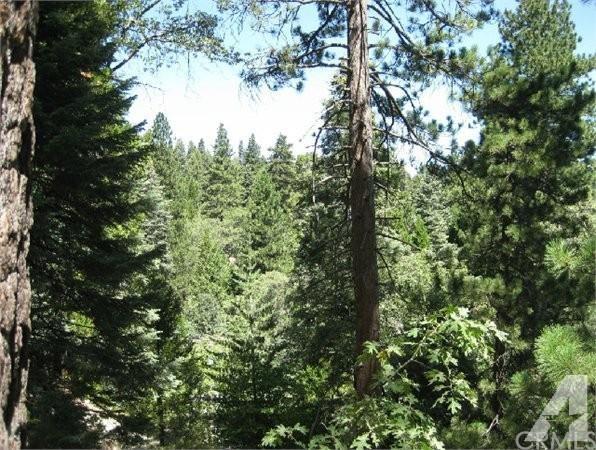 25641 Mid Lane, Twin Peaks, CA 92391