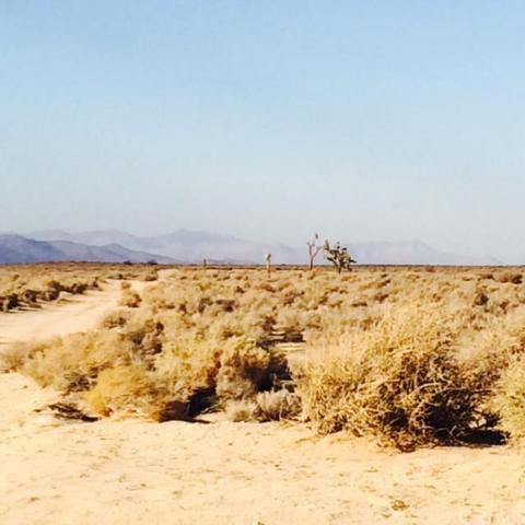 0 Sec 20 Township 11 Range 11, Mojave, CA 93505