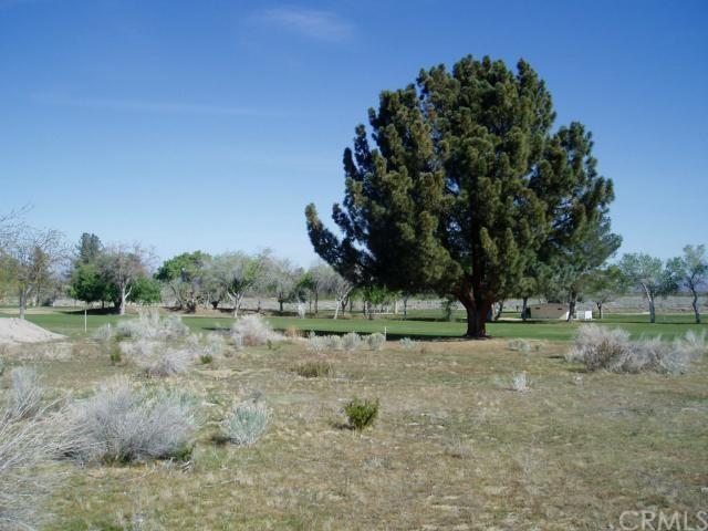 32043 St Anne Dr, Llano, CA 93544