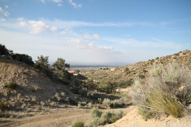 0 Deer Hvn, Pinon Hills, CA 92372