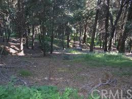 0 Vacant Land, Cedarpines Park, CA 92322