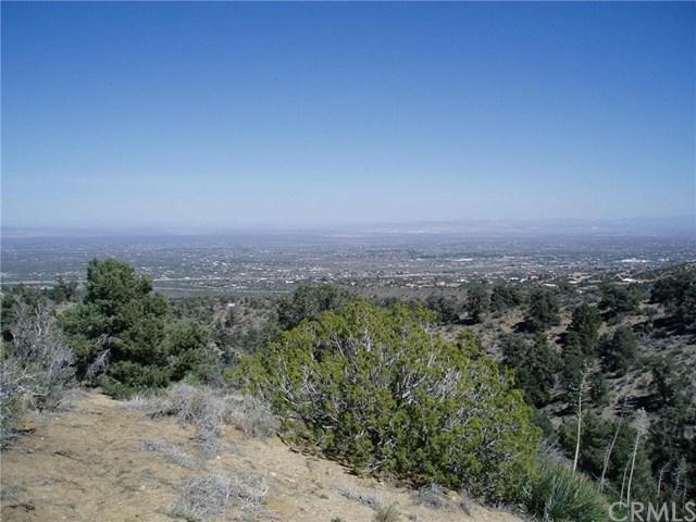 7935 Scenic Dr, Pinon Hills, CA 92372