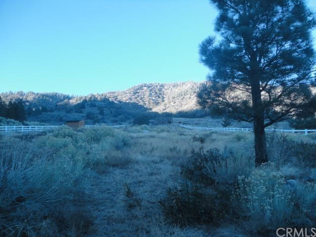 0 State Highway 2, Wrightwood, CA 93544
