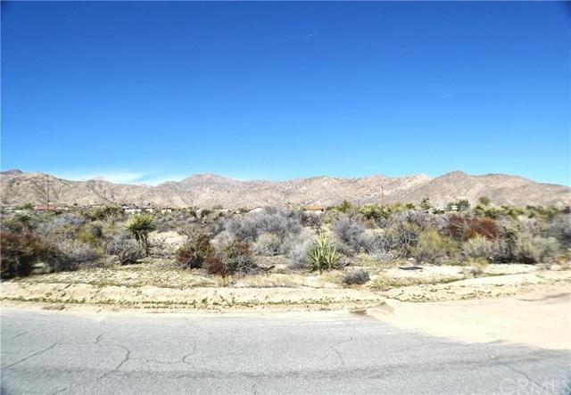 0 Pioneer Rd, Morongo Valley, CA 92256