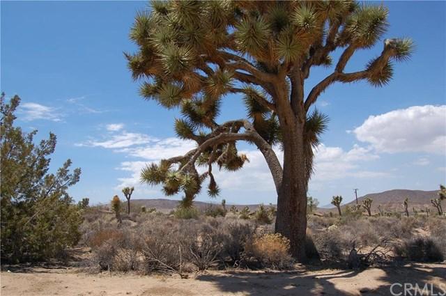 0 Canton, Yucca Valley, CA