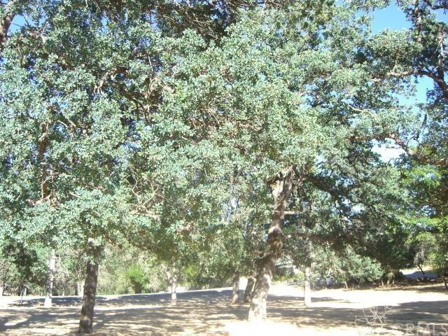 15675 Eagle Rock Road, Hidden Valley Lake, CA 95467