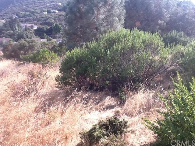 9995 Emerald Drive, Kelseyville, CA 95451