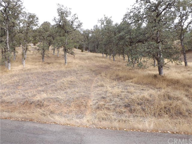 12200 Mountain View Drive, Clearlake Oaks, CA 95423