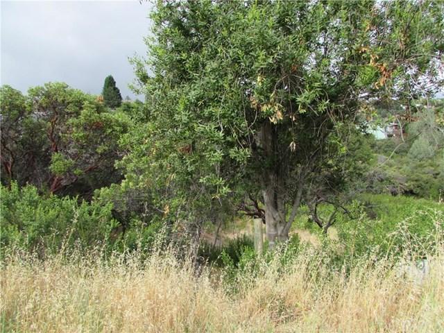 9889 Emerald Dr, Kelseyville, CA 95451