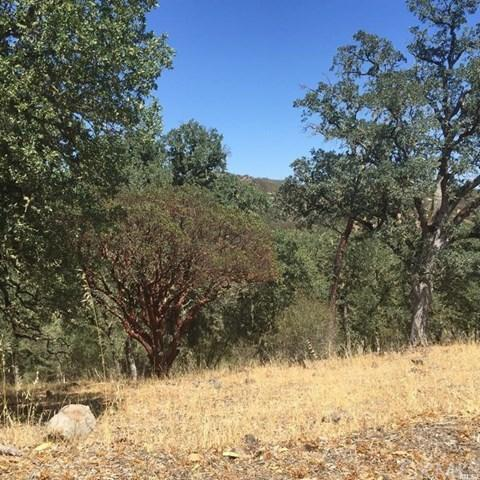 62 Lot Harness Dr, Pope Valley, CA