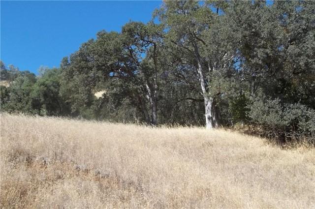11160 Pingree Road, Clearlake Oaks, CA 95423