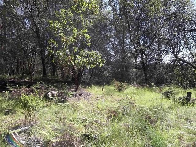 260 Bohnen, Santa Cruz, CA 95065