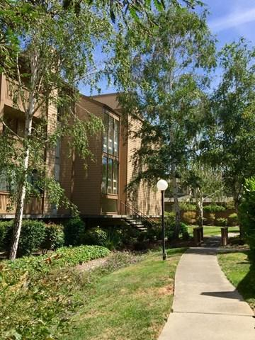 49 Showers Dr #A341 Mountain View, CA 94040