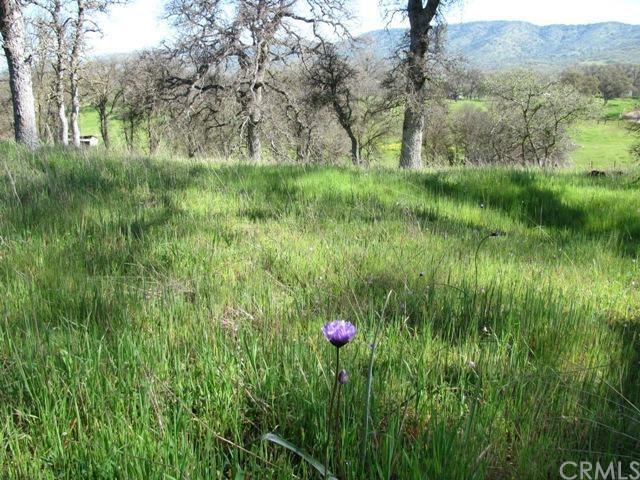 0 Golden Nugget Lane, Catheys Valley, CA 95306