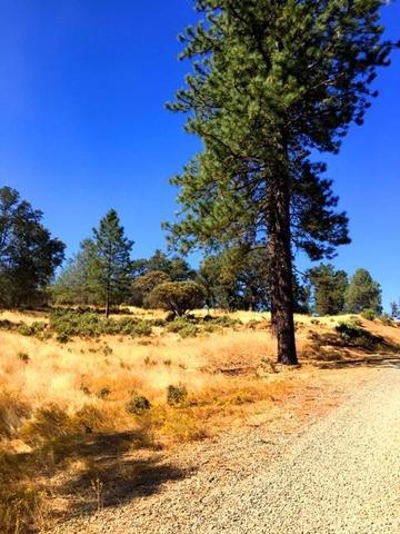 5887 Vineyard Ln, Mariposa, CA 95338