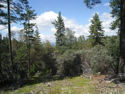 0 Lot 7 Wilderness Vw, Mariposa, CA 95338