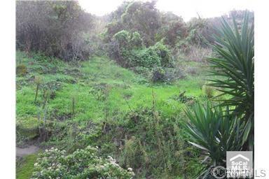 265 Woodland Dr, Laguna Beach, CA 92651