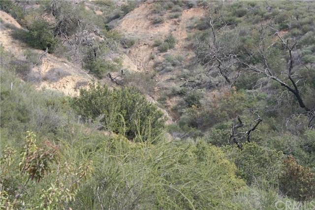 0 Unincorporated, Modjeska Canyon, CA 92676