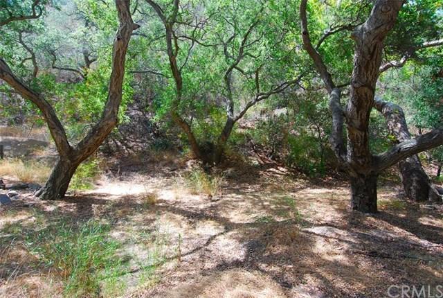 28552 Silverado Canyon Rd, Silverado Canyon, CA 92676