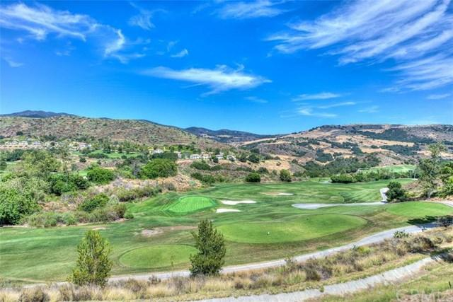 22 Indian Pipe, Dove Canyon, CA 92679