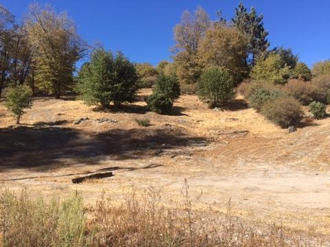 0 Eucaliptus, Cedar Glen, CA 92321