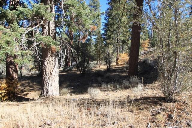 0 Deer Trail Ln, Fawnskin, CA 92333