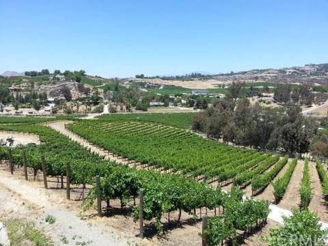 41625 Camino Del Vino, Temecula, CA 92592
